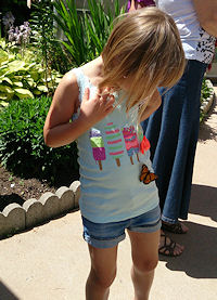 Fundraising Butterfly Release_8