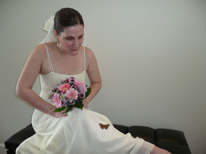 bride With Butterfly